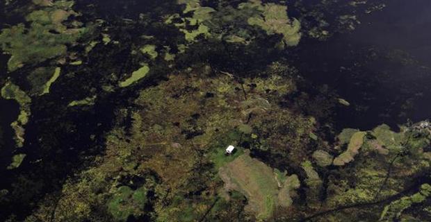8 Immagine fotografata da satellite